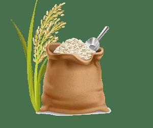برنج طارم سنگی