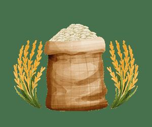 برنج طارم دم سیاه