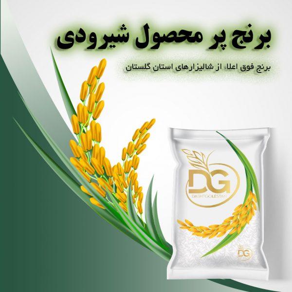 برنج پر محصول شیرودی