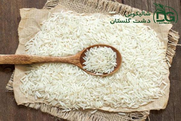 برنج فجر شالیکوبی دشت گلستان